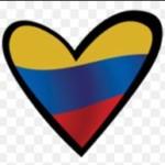 Logo del grupo COLOMBIANOS< SOLTEROS